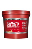 100% Whey Protein PROFESSIONAL Scitec Nutrition 5кг