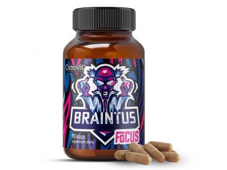 Стимулятор Braintus Focus Ostrovit (90 капсул)