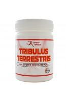 Трибулус Sport Havka Tribulus Terrestris (100 капсул)