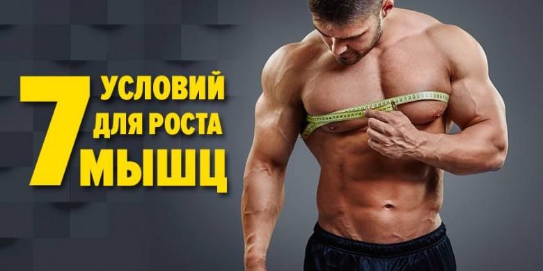 7 условий для роста мышц