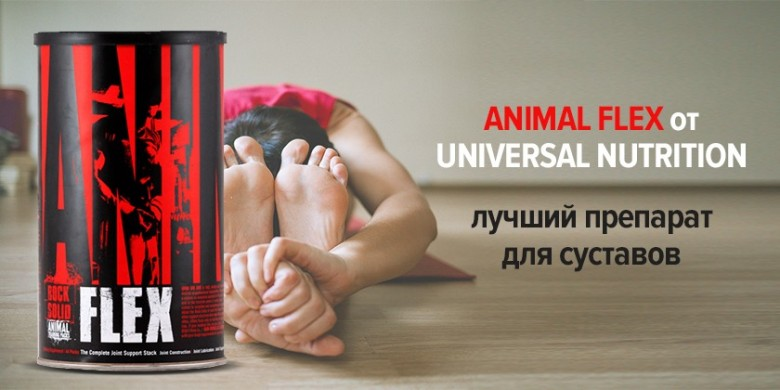 Animal Flex от Universal Nutrition - лучший препарат для суставов